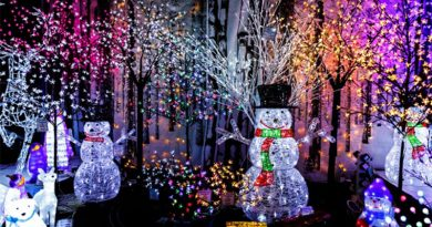 OPINION: Why Christmas lights are pointless and do more harm than good