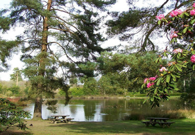 Top 5 hidden tourism gems in Kent